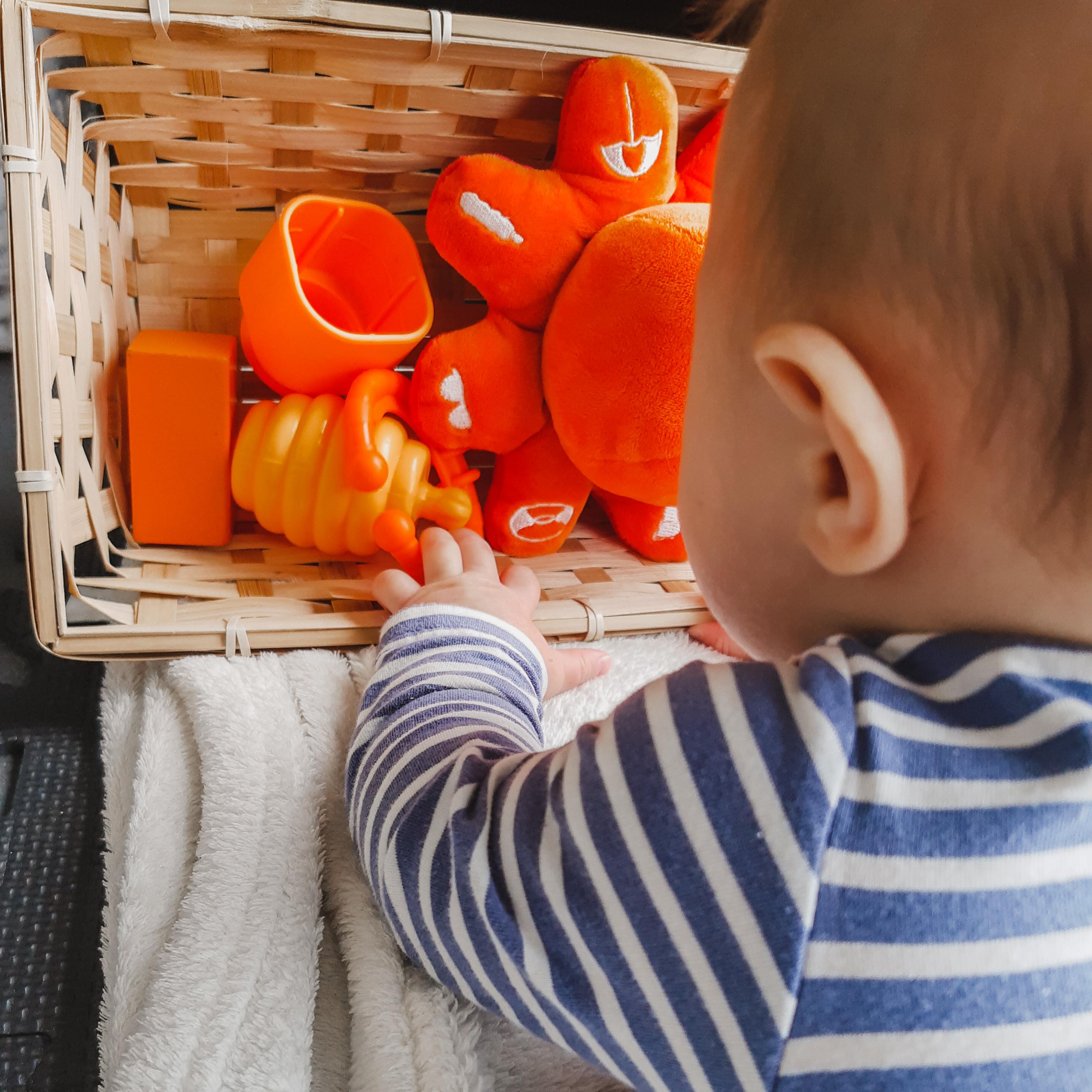 Discovery basket – baby week 22